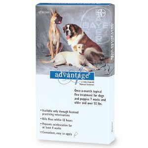 Advantage - Flea Control for Dogs and Puppies 21-55 lbs 6 Month Supply by Advantage