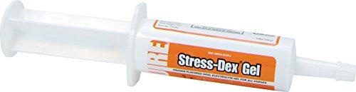 NEOGEN SQUIRE D Stress Dex Gel (Dex Supplements)
