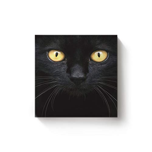 EZON-CH 28 x 28 Inch Canvas Wall Art Square Oil Painting Office Home Modern Decor,Black 3D Cat Face with Yellow Eyes Pattern Canvas Artworks,Stretched by Wooden Frame,Ready to Hang