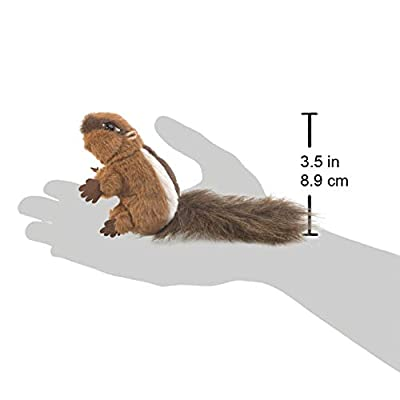 Folkmanis Mini Chipmunk Finger Puppet: Toys & Games