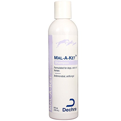 Dechra Mal-a-ket Formulated for Dogs, Cats and Horses Antibacterial and Antifungal Shampoo - Shampoo Deodorizing Horse