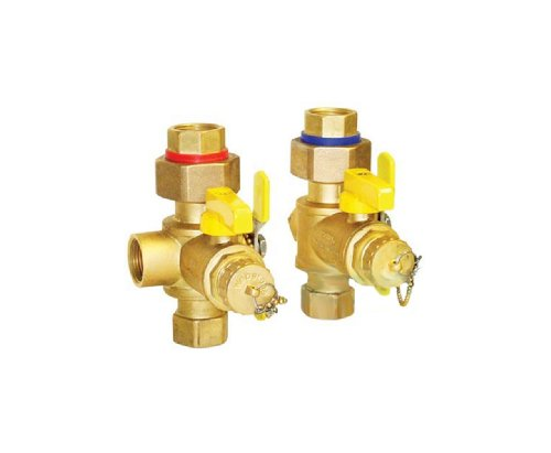 Webstone 40443PR 3/4-Inch IPS Isolator EXP Tankless Water Heater Service Valve Kit by Webstone