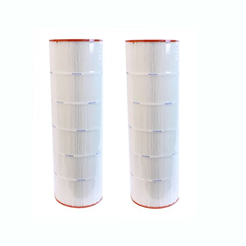 - Replacement Filter Cartridge for Predator 150, Pentair Clean & Clear 150-2 Pack