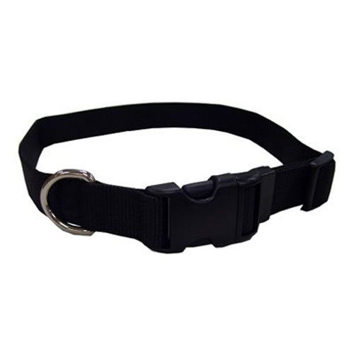 Coastal Pet 06901 A BLK26 Adjustable Dog Collar, 1-Inch, Black