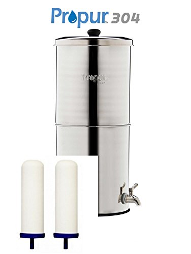 ProPur KING 304 Stainless + 2 ProOne-G 2.0 9'' Filter Elements - SCRATCH & DENT SALE! by ProPur