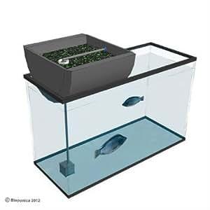 """Aquarium Biogarden 12"""" Small Aquarium Aquaponics System"""