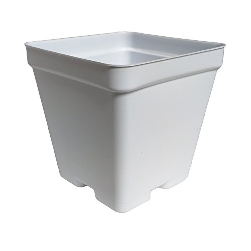 """wer Pots - Made in USA - Premium Quality, Reusable, Recyclable - Garden, Greenhouse, Hydroponics, Seed Starting (Actual Dimensions 3.5"""" Square By 3.5"""" Deep) (White, 100) (White Floral Pot)"""