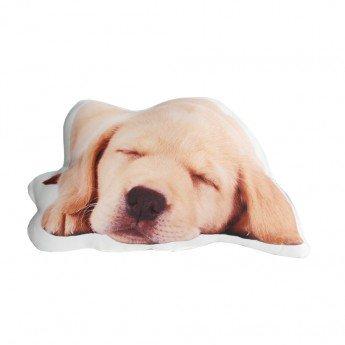 Cojín con forma de perro Golden: Amazon.es: Bebé
