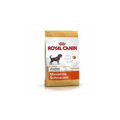 Royal Canin Mini Schnauzer Junior - Schnauzer Food