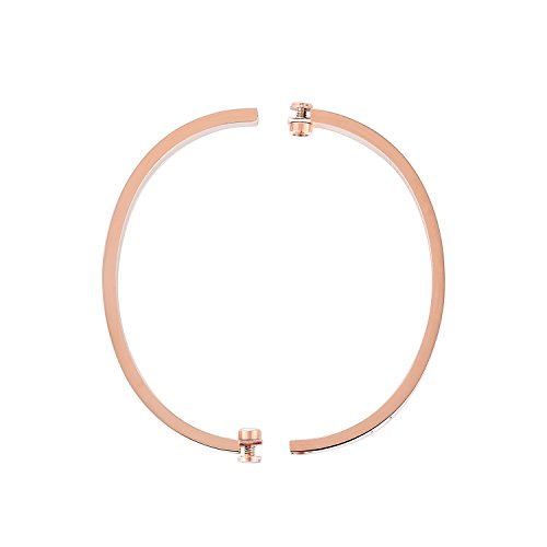 Z.RACLE Love Bangle Bracelet Stainless Steel with Screw - Best Gift for Love - 6.3IN Rose Gold CZ by Z.RACLE (Image #1)