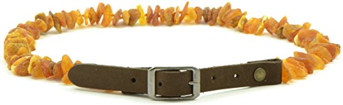 Amber Pet Collar with Adjustable Leather Strap for Dogs and Cats - Various Sizes (19.7