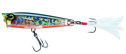 (Yo-Zuri F1134 HTS 3DS Popper Topwater Lure, 2-5/8-Inch, Holographic Tennessee Shad)