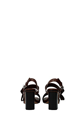 Women's Women's Fashion Sandals Tod's Brown Sandals Brown Fashion Tod's Tod's xqqAI6w