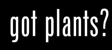 LLI Got Plants? | Decal Vinyl Sticker | Cars Trucks Vans Walls Laptop | White |5.5 x 2 in | LLI858