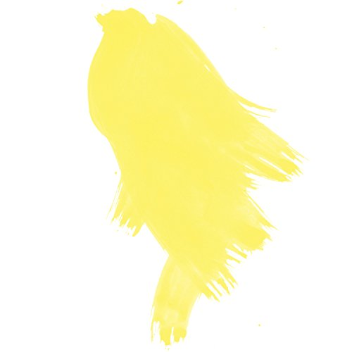 DALER-ROWNEY/FILA CO 160029651 FW LIQUID ACRYLIC INK 1OZ LEMON YELLOW from DALER-ROWNEY/FILA CO