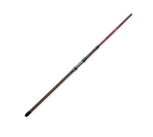 St. Croix Avid Surf Salt Water Spinning Rod