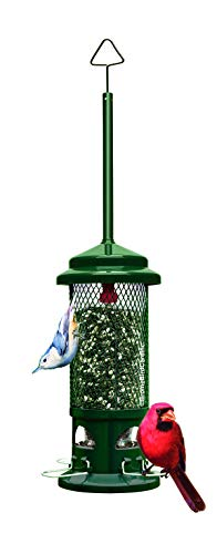 (Squirrel Buster Standard Squirrel-proof Bird Feeder w/4 Metal Perches, 1.3-pound Seed Capacity )