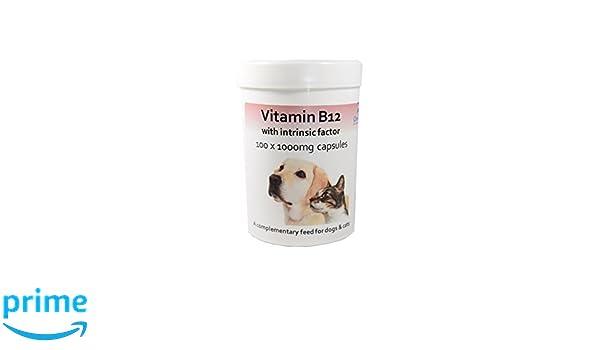 Cápsulas de vitamina B12 con factor intrínseco para perros y ...