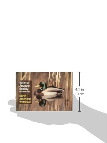 National Audubon Society Pocket Guide: North American Waterfowl (National Audubon Society Pocket Gui - http://medicalbooks.filipinodoctors.org
