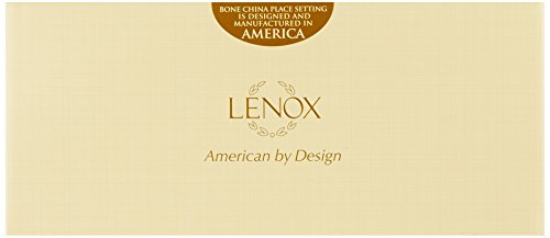 Lenox Vintage Jewel Platinum-Banded Bone China 5-Piece Place Setting, Service for 1 by Lenox (Image #1)