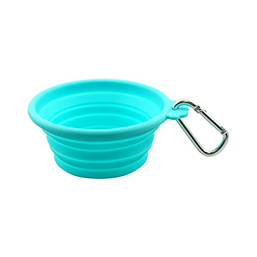 FFDPET Silicone Collapsible Travel Bowl for Dogs & Cats, Small, Teal by FFDPET