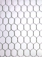 50 meters of Chicken Wire 600x25x50mt  Wire netting 2FT High