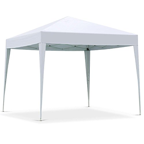 10x10 portable canopy - 9