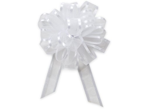 Pack of 12, Solid White Sheer w/Satin Edge 4