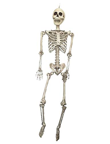 THEE Scary Skull Bone Party Human Skeleton Anatomical Model Halloween Decoration Height -
