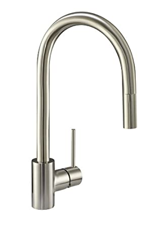 Danze DH450177SS Citron Single Handle Pull Down Kitchen Faucet, Stainless  Steel