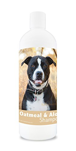 Healthy Breeds Dog Oatmeal Shampoo with Aloe for Pit Bull - Over 75 Breeds - 16 oz - Mild and Gentle for Itchy, Scaling, Sensitive Skin - Hypoallergenic Formula and pH Balanced