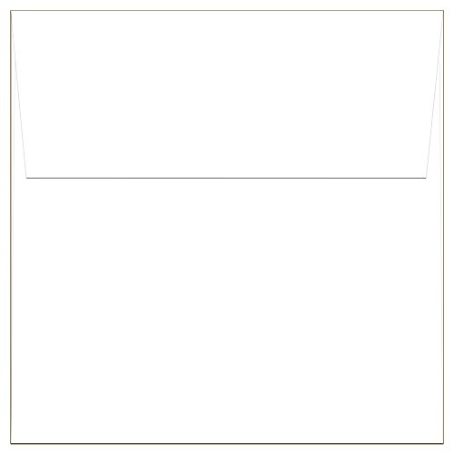 Square Square Flap - 40 White Square Envelopes - 5.5