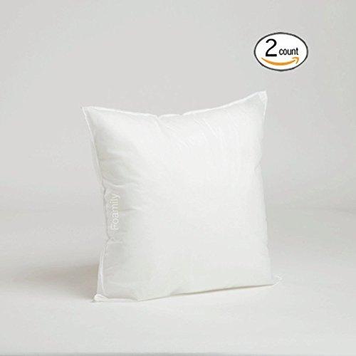 Best Price! Set of 2 - 16 x 16 Premium Hypoallergenic Stuffer Pillow Insert Sham Square Form Polyest...