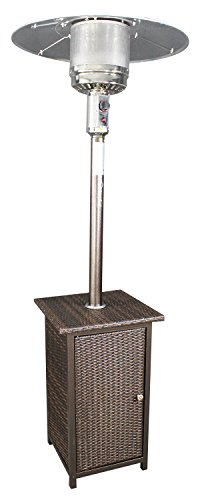 41000 BTU Gas Patio Heater Wicker Stand Stainless Steel Outd
