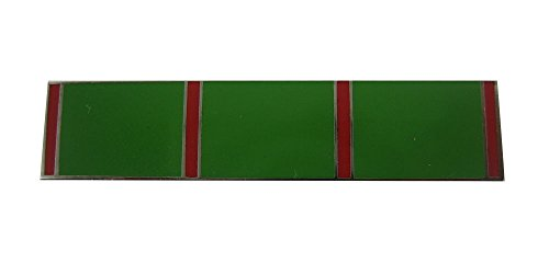 (The Pin People Green with Red stripes and Silver trim Citation Bar Lapel Pin)