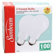 Rough Service 100 Watt Incandescent Bulb