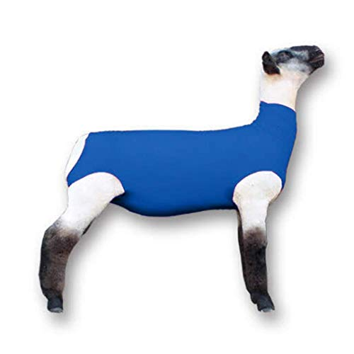 Show Pro Blue Spandex Lamb Tube for Show Sheep & Lamb - Show Livestock Supplies: Sheep Covers & Blankets (Medium)