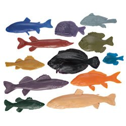 Nasco Life/form Fish Replica Rubber Stamp for Printmaking - Set of 12 - Arts & Crafts Materials - 9725937 by Life/form