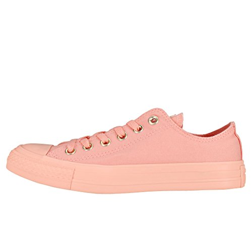 Chuck All Baskets Taylor Converse Star Ox Femmes dqn7Pw6