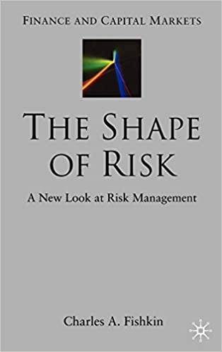 70ab4a0fd The Shape of Risk  A New Look at Risk Management (Finance and Capital  Markets Series)  9781403932884  Economics Books   Amazon.com