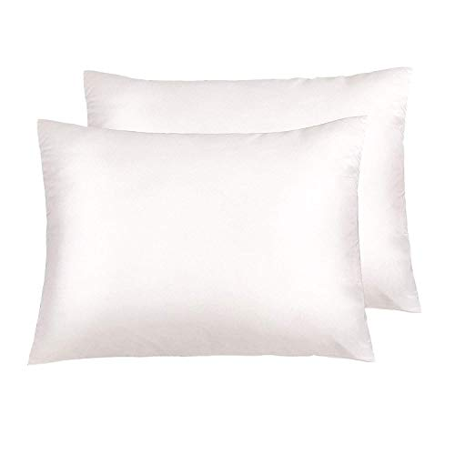NTBAY Silky Satin Standard Pillowcases Set of 2, Super Soft and Luxury, Hidden Zipper Design, 20