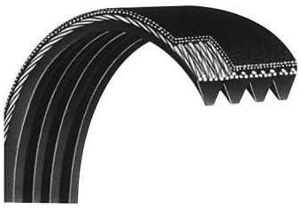 Treadmill Doctor Drive Belt for Spirit XT685 Tread 240//610J Model Number 685810