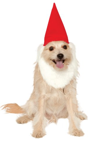 Rubies Costume Company Garden Gnome Hat with Beard for Hats, Small/Medium
