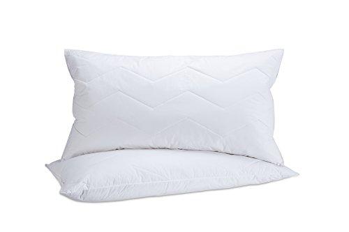Mini Feather Firm Pillow 2 Piece Set