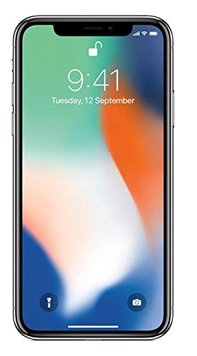 Apple iPhone X 256GB Silver (Renewed)