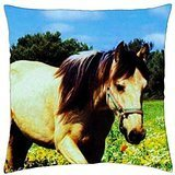 Buckskin Pony - Throw Pillow Cover Case (18