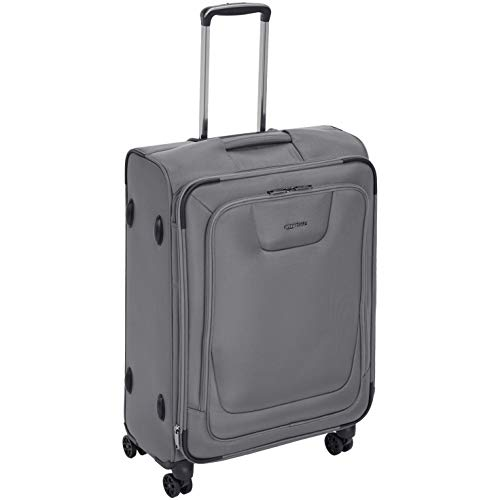 AmazonBasics Expandable Softside Spinner Luggage Suitcase With TSA Lock And Wheels - 25 Inch, Grey