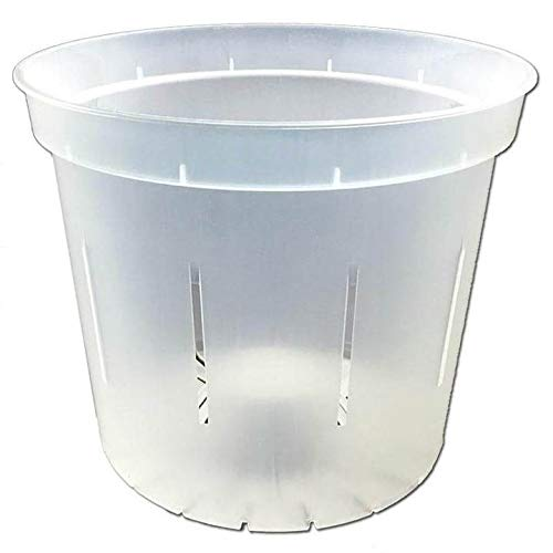 6 Slotted Clear Orchid Pots by rePotme – 3 Pack Crystal Clear