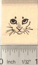 Lil Cat Mini Stamp