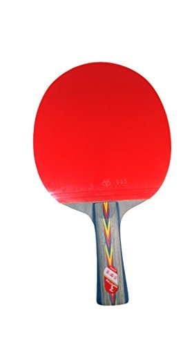 ArtTeam Table Tennis Paddle: Ping Pong Racket, Table, with Case